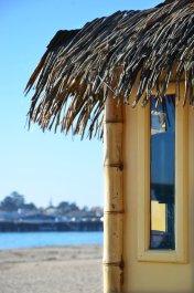 Santa Cruz Boardwalk 1-12 241