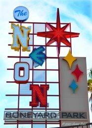 Neon Boneyard 011-c