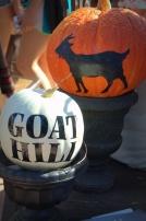 Goat hill 019.NEF